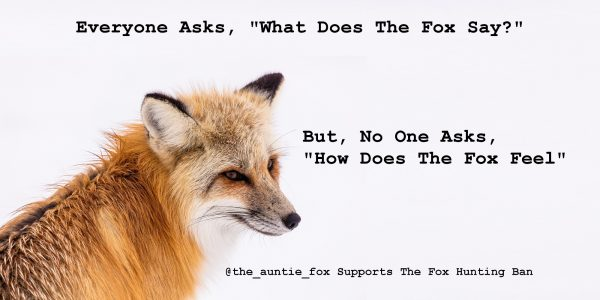Tweet To Support The Fox Hunting Ban