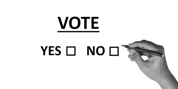 Will You Vote